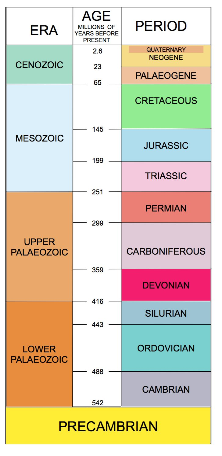 15 3 Geological time scale Alison Tymon